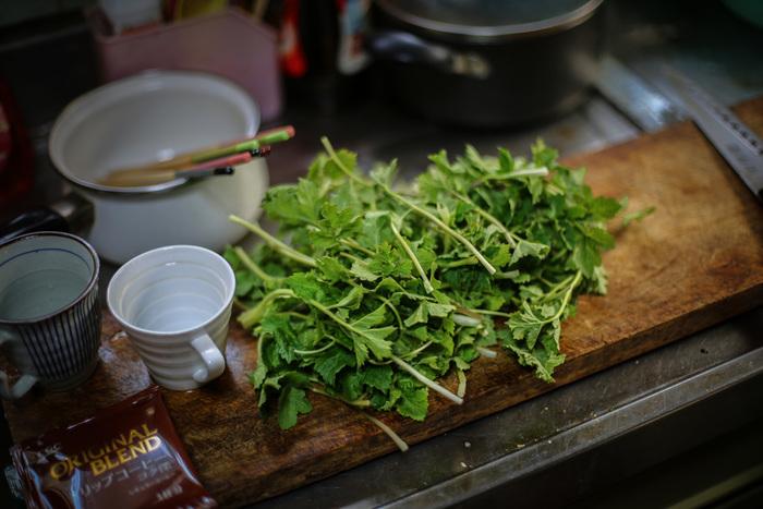 春を告げる大人のほろ苦さ。知っておきたい《季節の山菜》下処理とレシピ集