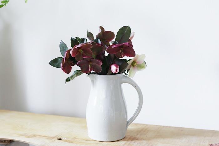 ピッチャーに活けると、キッチンやテーブルの上によく馴染みます。清潔感のある白い陶器やガラス素材がおすすめ。
