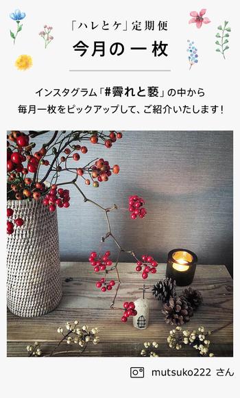 12月には、クリスマスのディスプレイにもぴったりな国産サンキライをお届け。ニュアンスのある枝ぶりが、とってもいい雰囲気です。