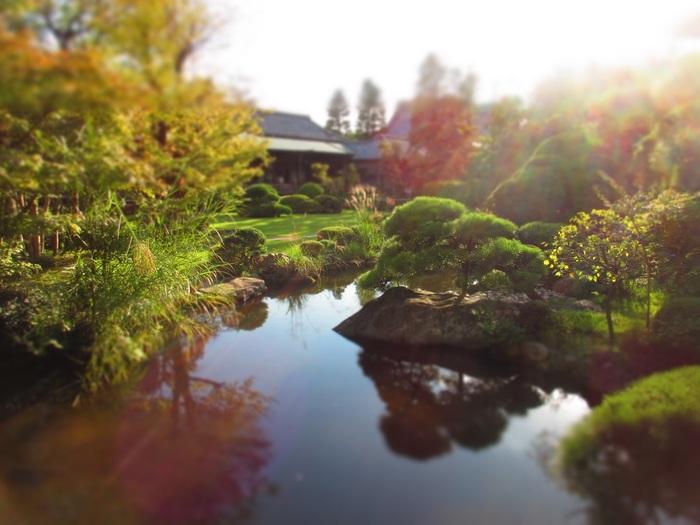 回廊の途中では、腰かけて無料のお茶を楽しめる場所も。四季折々に姿を変える庭の眺めを心ゆくまで堪能しましょう。