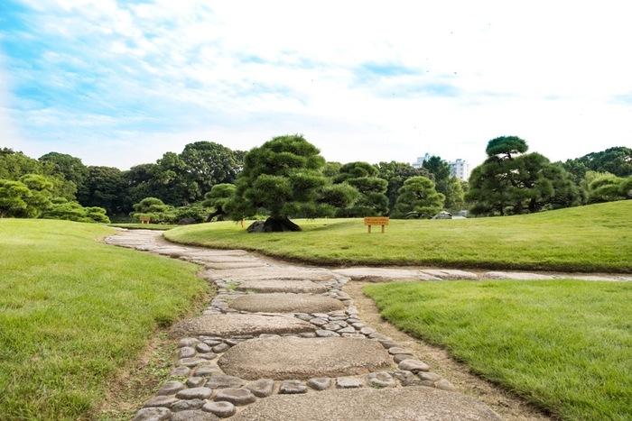 「清澄庭園」の西側(画像左側)は、緑豊かな芝生が広がる無料の開放公園です。
