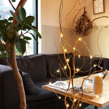 こんな照明の在り方も素敵。 お部屋の観葉植物に電飾を絡ませるだけで、 ムードある照明道具に早代わり。  ほっと心安らぐひとときを過ごすことができそうです。 ナチュラル思考の方に特におすすめのアイデアです。