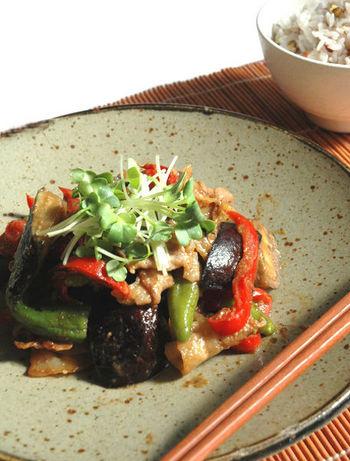 夏野菜であるナスは、発酵食品・味噌の力を借りて調理することで、体を温める陽性レシピに早変わり◎  こちらのレシピだと、味噌のほかにも生姜や豆板醤、醤油など体を温める食材がたくさん使われていますよ。