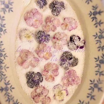 ビオラを洗ってよく水気を切り、コシを切った卵白を刷毛で塗って砂糖をまぶします。2日ほど乾燥させると、手で持てるようになるとか。ケーキの飾りつけにしたり、紅茶に添えたりして、優雅に楽しみましょう。