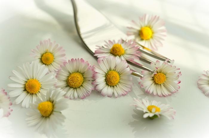 エディブルフラワーの種類は、意外に多いようです。デイジー、ベゴニア、マリーゴールド、パンジー、ビオラなど、よく知っているお花もいろいろ。ただ、必ず食用として栽培されたものを使ってください。デパートや大手スーパーなどで販売されています。