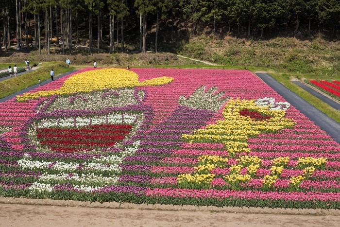たんとうチューリップまつりでは、色とりどりのチューリップで描かれた「花絵」が現われます。約10万本のチューリップによって描かれた花絵は壮観です。