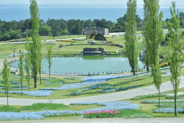 約330ヘクタールの敷地面積を誇る淡路島国営明石海峡公園は、2002年に開園された公園で、大阪湾に面しています。