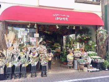 鉢植え用の季節の花や観葉植物・ドライフラワーやアイビーを取り揃えた人気の「吉祥寺フラワーショップ はなゆき」。他のお花屋さんと違って店先には、英字新聞にくるまれたドライフラワーが並んでいます。