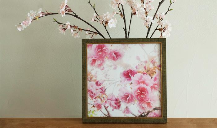 ハンカチのプレゼントは定番ですが、せっかくの春ですから、思い切り美しい満開の桜はいかがですか?写真は、オーガニックコットンと東北コットンで作った桜の大判タオルハンカチ。その美しさは絵画のよう。飾っておきたくなります。