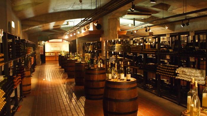 こちらは山梨県勝沼「ぶどうの丘」にあるワインカーヴ。地下のカーヴで試飲を楽しむなんて、ワイン愛好家には夢のようなプランですよね。心地良く酔ったあとは、温泉に入ってふかふかのベッドでお休み。お土産はもちろん、その土地の「テロワール」を感じるワインで決まりです。