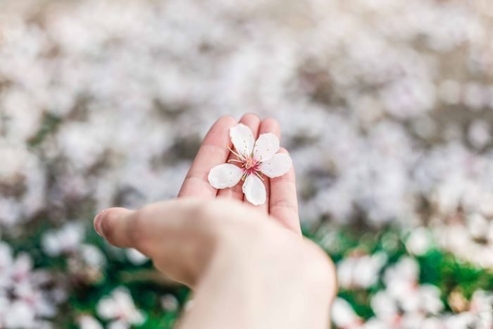 日々の生活の中で少しずつ自分自身をいたわることで、寒暖差の激しいこの時期を気分良く乗り切ることができます。上記以外にも、自分の趣味を楽しんだり仲良しの友達と会ったりして色々な方法でストレス発散していきたいですね。心身のバランスを整えるためにも、これらの習慣を無理のない範囲で取り入れていきましょう。
