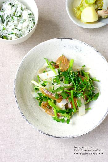 鯛の昆布締めと、春ならではの味わい、せりとうどを使った贅沢サラダ。日本酒のおつまみにもなりそうな、上品な風味です。限られた時期しか味わえない貴重なサラダですね。
