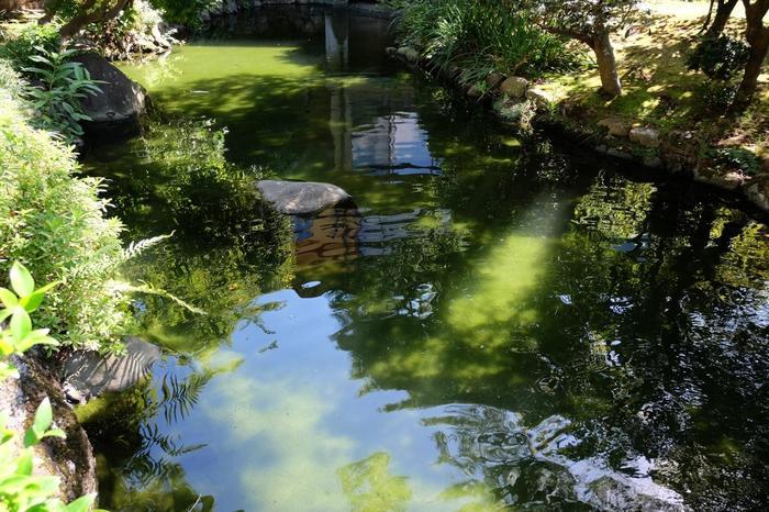 「起雲閣」の庭園は、一千坪にも及ぶ池泉回遊式庭園です。緑と水を湛えた広い庭園は、四季折々に豊かな景色を広げます。時間にとらわれず、ゆったりと散策しましょう。