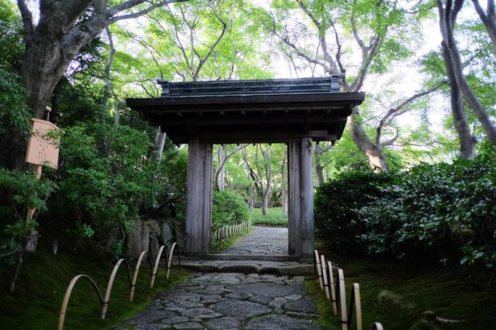 「MOA美術館」の広大な敷地内には、本館やムアスクエア他に、尾形光琳の屋敷を復元した「光琳屋敷」や茶室が建つ日本庭園「茶の庭」があります。【「茶の庭」の入口に建つ「唐門」】