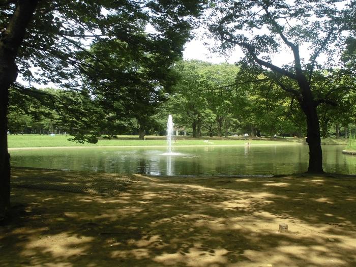 平成に入ってから噴水と水回廊が整備され、水のある自然の風景も楽しめるようになりました。園内は道を挟んで、広い芝生やバードサンクチュアリ、噴水のあるA地区と、イベントスペースや競技場のあるB地区とに分かれています。