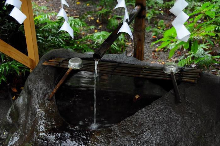 境内は、参拝するのに丁度良い広さです。境内入口の大鳥居の参道を進めば、右に「第二大楠」と呼ばれる巨木が、左手奥に摂社「来宮稲荷明神」、その手前に「手水舎」があります。【参道途上に湧き出る「御神水」】