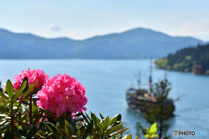 1泊2日のショートトリップでも十分に楽しめる「箱根」の旅。東京からは小田急ロマンスカーで1本なので、車がなくても大丈夫。芦ノ湖や大湧谷などの絶景はもちろんのこと、春は桜やツツジが見頃です。カメラ片手に自然の中を散策したり、美術館や伝統工芸を見学したりと楽しみ方もいろいろです。