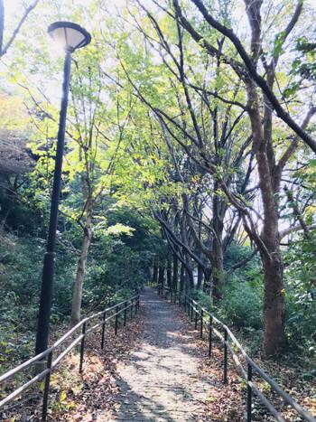 陽の光と澄んだ空気に全身に浴びて、のんびりと散歩をするのもおすすめです。まだまだ寒い季節ですが、少し歩くと身体もすぐにポカポカしてきます。今日の仕事が不安な時はゆっくりとイメージトレーニングをしてみるのも落ち着きますし、なんとなく倦怠感がある時はぼんやりと景色を眺めたり、クリアな空気の中で深呼吸を。