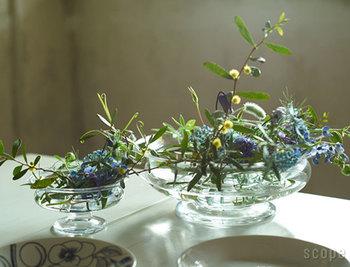脚つきで低めのフラワーボウル。小さめの植物をたくさん飾ると華やかになります。ダイニングテーブルなどに置くと、おもてなしのときにもぴったりです。
