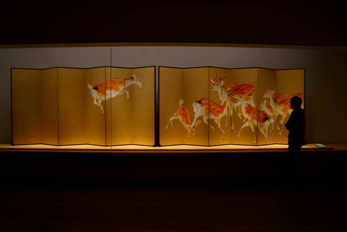 当美術館は、長い改修工事期間を経て、2017年2月にリニューアルオープンしています。 【画像は、所蔵品の一つ、竹内栖鳳筆による六曲一双屏風『夏鹿』。】