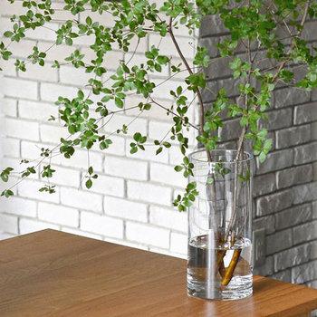 凹凸のないすっきりとした形の、高さのあるフラワーベースです。枝物を飾るのにちょうどいいサイズ感です。