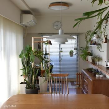 リビングやキッチンは家族の集まる大事なスペースです。快適に暮らすためにも収納はきちんと考えたいですよね。