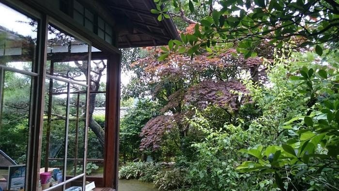市内には、紹介した3つの邸の他にも、「池田満寿夫・佐藤陽子 創作の家」等、歴史的な建造物が数々残っています。建築に興味のある方は、閑静な別荘を巡り歩くのもお勧めです。 【画像は、先述の「來宮神社」から徒歩圏にある国文学者・歌人の佐佐木信綱の旧邸「凌寒荘」。土日のみ無料公開。】