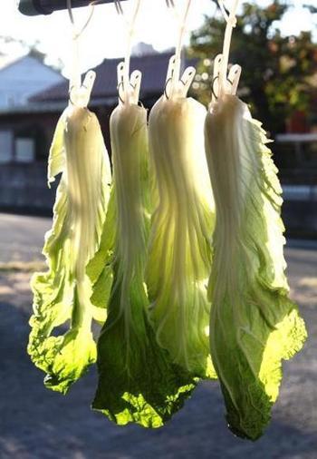 丸ごと買った白菜は、冷蔵庫でしなびてしまうことも多いですよね。その前にぜひ干し野菜に!適度に水分が抜けているので、炒めものにしても水っぽくなりにくいのが特徴です。食べやすいようにカットしてざるで干すのはもちろん、こんな風に1枚ずつ風通しの良いところに干しても◎芯の部分がしんなりしてきたらできあがり。