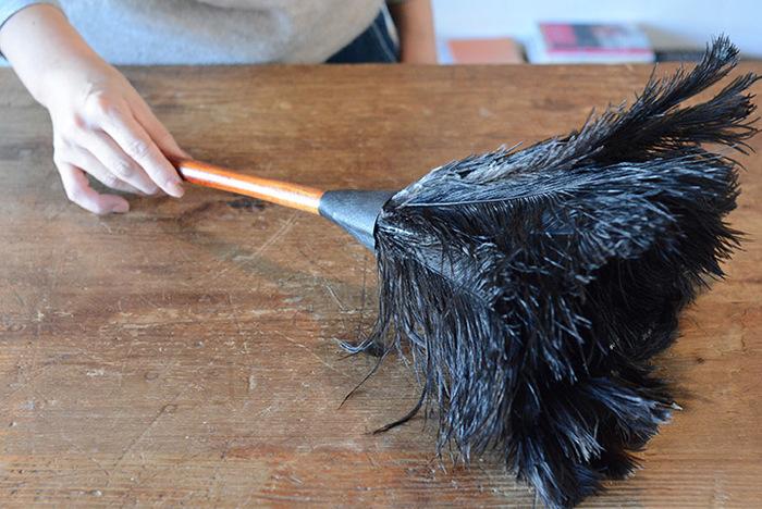 掃除はまずホコリを落とすことから始めます。天然のオーストリッチの羽根を使用した柔らかいはたきなら、デリケートな場所や狭い部分の細かなホコリもサッと拭き取れます。