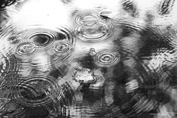 「芒」はイネ科の植物の穂先にあるとげのような毛の部分で、田植えの目安となる季節であることを表します。五月雨が降り続き、南から次第に梅雨入りの報が届くようになります。