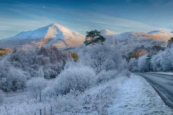 雪が本格的に積もりはじめ、朝晩には氷が張る季節です。山はすっかり雪をかぶり、平地には霜柱が立ち始めます。動物は冬ごもりをはじめ、人々も師走を迎えて何かと慌ただしい季節となります。