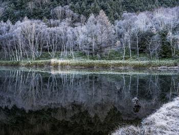 池の氷が厚みを増し、寒さがますます厳しくなる季節です。この日から節分までを「寒」と呼ぶため、別名「寒の入り」とも呼ばれます。1月10日頃には茶道の初釜(はつがま)が行われ、新春を祝う花びら餅がふるまわれます。新年に挨拶ができなかった人には、小寒から大寒までの約1か月間に、寒中伺いの挨拶を行います。