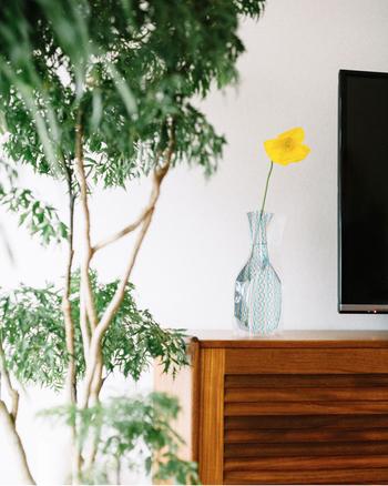 テレビなど家電製品の近くにこそ、生のお花をさりげなく飾りたいですね。パッと場が華やぐような鮮やかな色のお花を一輪。ただそれだけで空間の雰囲気が和みます。
