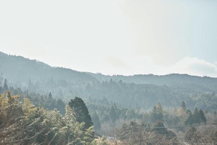 【連載】#インスタとわたし  vol.7 –sippoさん(@siippo)