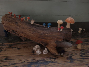 こちらは谷口さんが森の中で出会ったキノコたち。細い棒針を使って、立体的に編んでいます。ずっとそこに居たかのように、自然な佇まい。