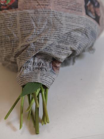 お花をまとめてキュッと束ねて、茎の下部を残して新聞紙でくるみます。