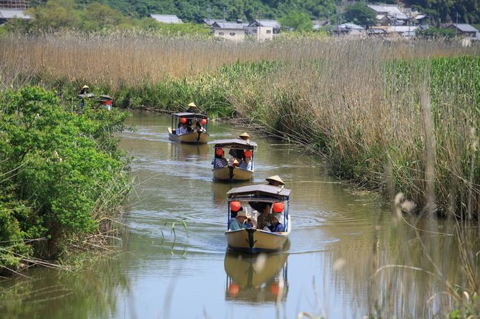 日本三大水郷(福岡の柳川、茨城の潮来、近江八幡の水郷)の一つに数えられる近江八幡市の水郷は、江戸時代の面影を色濃く残しており、その景観の素晴らしさから国の重要文化的景観第一号に選定されています。