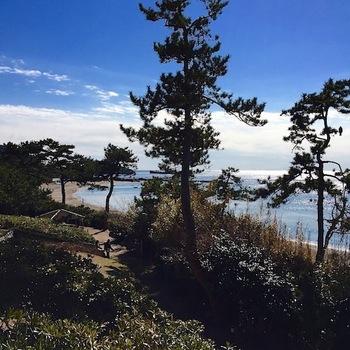 店を出て坂を下ると周遊路があり、一色海岸に出られますよ。