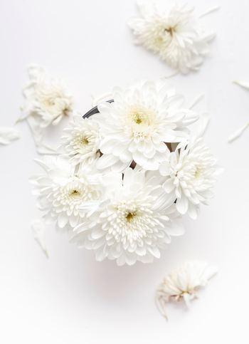 「清楚」という言葉の意味は、清らかですっきりしていること。「清楚」の花言葉を持つ花は、オレンジやオンシジウム、桔梗やトサミズキなどの小さいけど存在感のある花たち。意外にも白い花ではなく、色とりどりの花々です。 パワーストーンでは真珠が清楚なイメージを与えてくれるとして知られています。  これらのイメージのように個性を際立たせてはいないけれど意志を持ってそこにいる。 そんな女性が私たちが言う「清楚」な女性なのかもしれませんね。