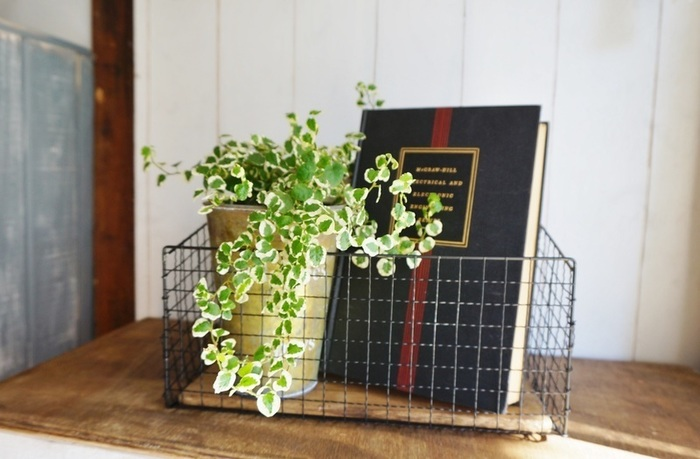 バーベキュー網と木材を使った300円でできるワイヤーラックは、網を曲げる&カットして作っています。黒のスプレーで塗装すると、クールで男前な雰囲気に。こんな風に表紙が素敵な本やグリーンなどを入れても◎実用性とおしゃれを同時に叶えてくれます♪