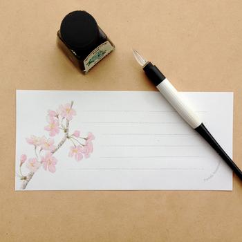 春は木々や草花が次々に花ひらく明るさを感じる季節。同時に進学などで家族の生活に変化が起こる節目でもあります。それもあってか、この季節のお手紙の書き出しは、春の花にまつわる華やかなものが多く見られます。  【書き出しの一例】 ・桜の便りも聞かれるころとなりましたが、いかがお過ごしですか。 ・春雨に心落ち着く毎日となりました。 など、身近な自然を感じさせる言葉から描きはじめると、その後の近況を書き続けやすいですね。