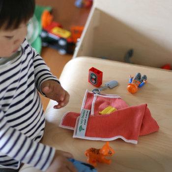 洗剤を使わず水拭きだけでキレイになるから、お子さんのおもちゃの掃除にもおすすめ。日常のちょっとした拭き掃除にあると便利です。
