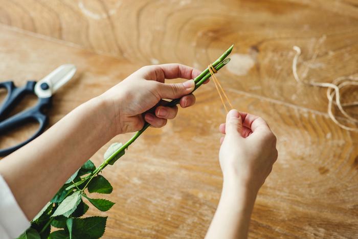 ②水分が抜けて茎が痩せてくるので、まずは輪ゴムで束ねます。片方に引っ掛けてぐるぐると巻きつけます。