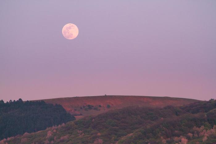 「陰」の月のパワーを取り入れたら、日中に「陽」の太陽の光をたくさん浴びて、陰陽のバランスをきちんと取ることが大切です。また、できたらカレンダーに満月や新月になる日を書き込んでおくと、自分の心のペースがつかみやすくなるかもしれませんね。月と心身のリズムをシンクロさせて、よりイキイキと生活できますように。