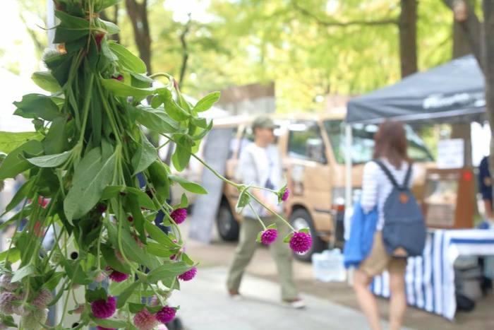 都会で過ごしていると忘れがちな、草花が四季を知らせてくれるということ。 ここに来ると季節の変わり目を意識するようになったというお客さんも少なくないのです。