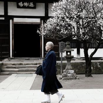 質素に、心穏やかに暮らす人…とイメージすると、凛と背を伸ばして静かに歩くお坊さんが浮かびます。