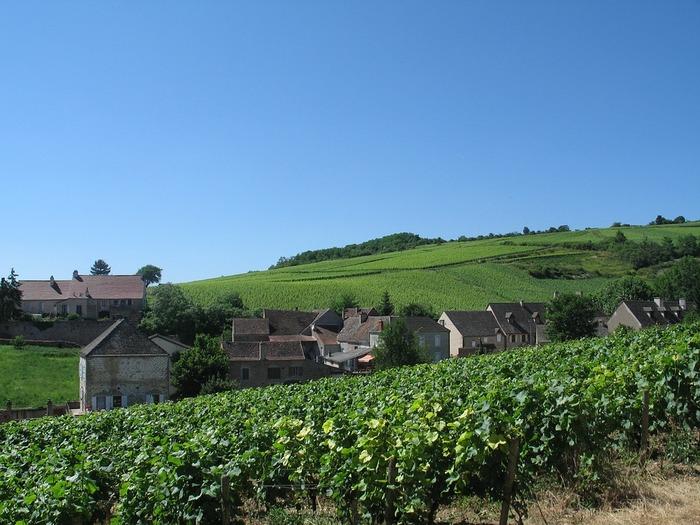 フランスの中東部に位置するブルゴーニュ地⽅。ロマネ・コンティなどで知られるワインの名産地であり、また、りんごの産地としても有名。りんごのお酒である「シードル」や「カルヴァドス」を作っている農家さんも多いです。また、そば粉でつくったクレープ「ガレット」発祥の地としても知られていますよ。