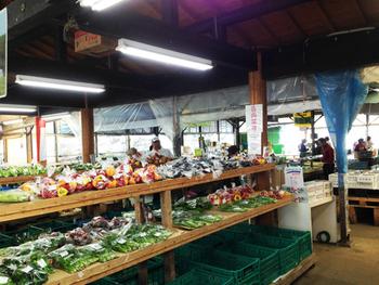 その日の朝に採れた野菜を販売しているので、どの野菜も新鮮!とにかく野菜の品揃えが豊富で安いんです。その季節ならではの旬のお野菜もありますよ!