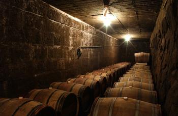 醸造棟でワインの造り方の説明やDVDを見て、国の登録有形文化財にの石蔵発酵槽と地下セラーを見学します。100年以上前に花崗岩で造られた石蔵発酵槽で仕込まれたワインは、タイミングが合えば見学後に売店にて試飲できます。 こちらは、ずらりと樽が並ぶ地下セラーで、樽熟成の工程や樽の種類などの説明をしてくれます。