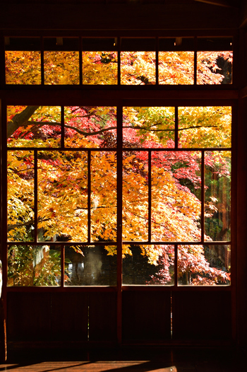 明治18年頃、実業家瀬川安五郎がに邸宅として建てられた「南昌荘」は、美しい庭園も見ごたえがあり、明治・大正・昭和・平成と130年の歴史を紡いできた趣を感じます。建物は盛岡市の「保護庭園・保存建造物」に、庭園は国の「登録記念物」に指定されています。